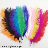 Feathers Asst. Colors